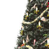 albero di natale sostenibile