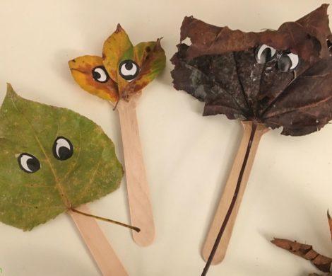 mostriciattoli foglie secche2
